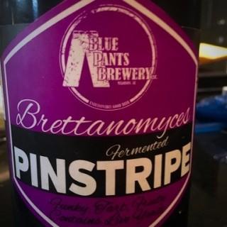 bluepants-brettpinstripe_0